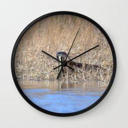 Watercolor Otter 06, Janes Island, Maryland Wall Clock