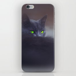 Black Cat with Green Eyes iPhone Skin