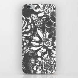 Garden of Stone iPhone Skin