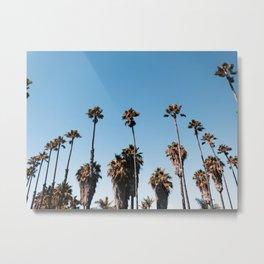 Palm Row Metal Print