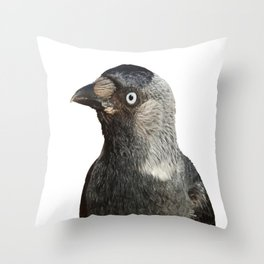 Jackdaw (Corvus monedula) Bird Portrait Vector Throw Pillow
