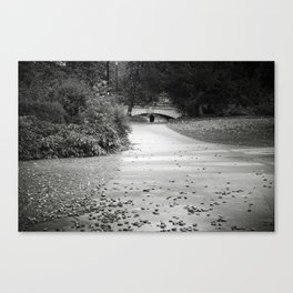 Black and white path Canvas Print