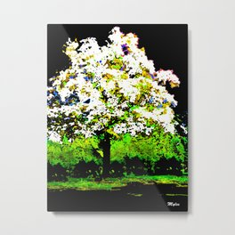 TREE OF THE MORNING LIGHT Metal Print