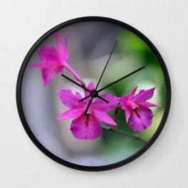 Pink Orchide Wall Clock