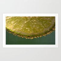 lime green Art Prints featuring Lime! by Caroline Benzies Photography