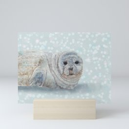 Snowy Seal Mini Art Print