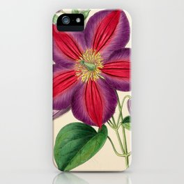 Smith, Worthington G. (1835-1917) - The Floral Magazine 1869 - Clematis Magnifica iPhone Case