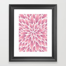 Petal Burst #10 Framed Art Print