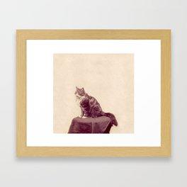 Cat Called Purple Framed Art Print