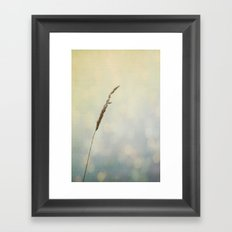 Reflections of a Summer Lake Framed Art Print