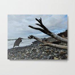 Salty Raven stormy beach Metal Print