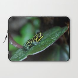 Poison Dart Frog R. Imitator Male Laptop Sleeve