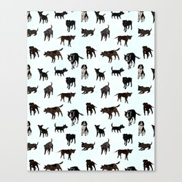 Dogs Unwanted Canvas Print