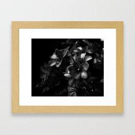 fiore a cascata Framed Art Print