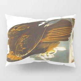 Golden eagle John James Audubon Vintage Scientific Bird Illustration Pillow Sham