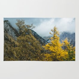 Mountains of Austria.    Autumn in Snow Alps.    Schneealpe.    Österreich. Rug