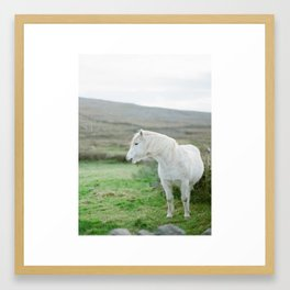 Irish Horse Framed Art Print