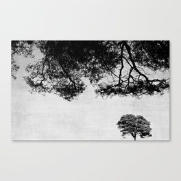 "Nature ""Upside down"" Canvas Print"