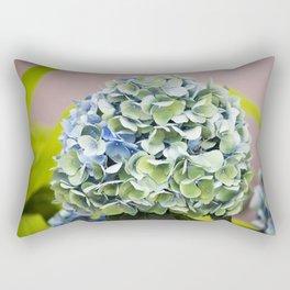 Longwood Gardens - Spring Series 255 Rectangular Pillow