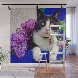 Orazio charming cat in the blue Wall Mural