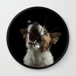 Jack Russell Terrier 9 Wall Clock