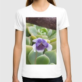 little violet in the morning T-shirt