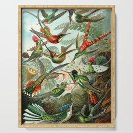 Ernst Haeckel Hummingbirds Serving Tray