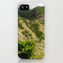 St. Johns iPhone Case