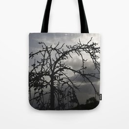 Deadly tree silhouette on cloudy background Tote Bag