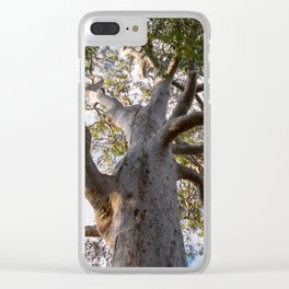 Scribbly Gum Tree Clear iPhone Case