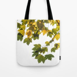 Green And Yellow Maple Leaf Tote Bag
