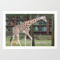 Giraf Art Print