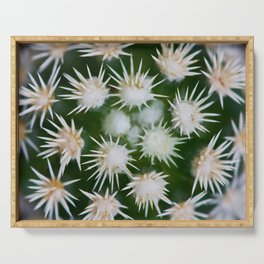 Cactus Close Up Serving Tray