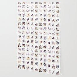 Collection Portrait ~ Los Caprichos Wallpaper