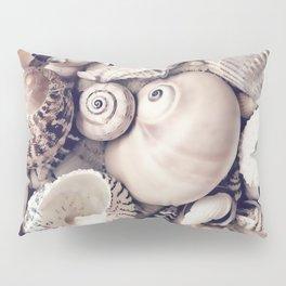 Vintage  Sea Shell Collection Coastal Style Pillow Sham