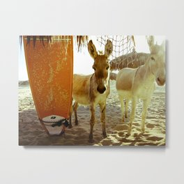 Baby Surfer Dunkeys Metal Print