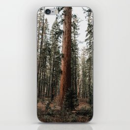 Walking with Giants iPhone Skin