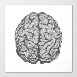 Brain vintage illustration Canvas Print