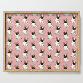 Pouty Cute Black Mask Pied French Bulldog Wants Your Love Serving Tray