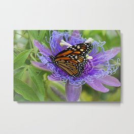 The Passionate Monarch Metal Print