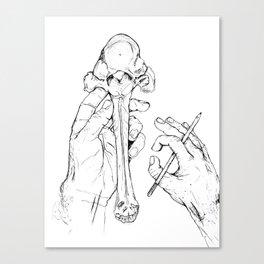 Holding Skeletons Canvas Print