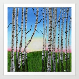 Birch Trees at Sunset Art Print