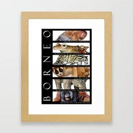 Animals of Borneo Framed Art Print