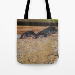 Baby Barn Swallows Tote Bag