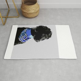 Black Standard Poodle in Blue Rug