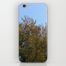 Look Up More Often iPhone & iPod Skin