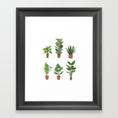 Watercolor Plant Collection Framed Art Print