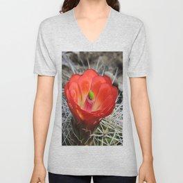 Red Blossom on a Hedgehog Cactus Unisex V-Neck