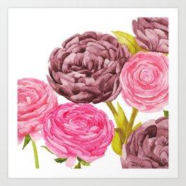 Ranunculus + Peonies Art Print