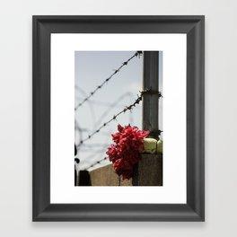 Untold Story Framed Art Print
